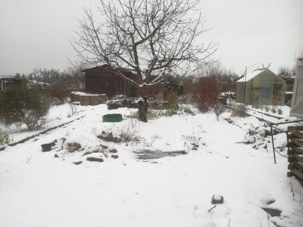 Ansicht des Gartens im verschneiten Zustand