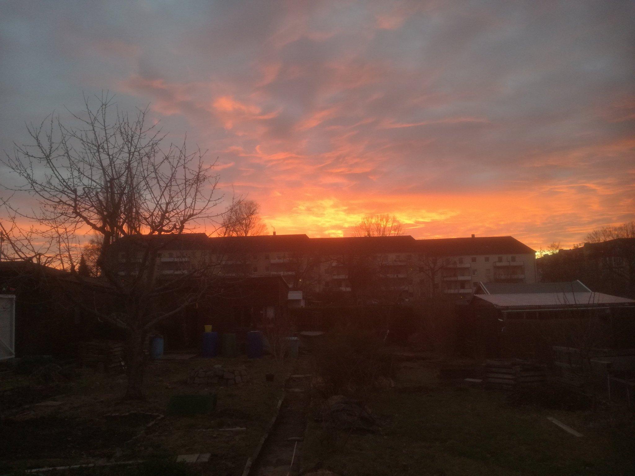 Sonnenuntergang über den Hausdächern, der Garten im Vordergrund